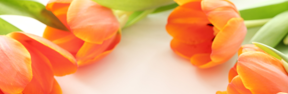 Fleurs Dijon